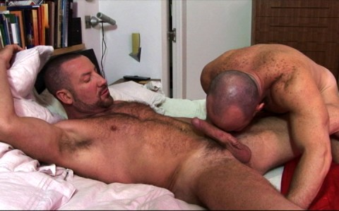 l7293-cazzo-gay-sex-porn-hardcore-alphamales-out-on-parole-003