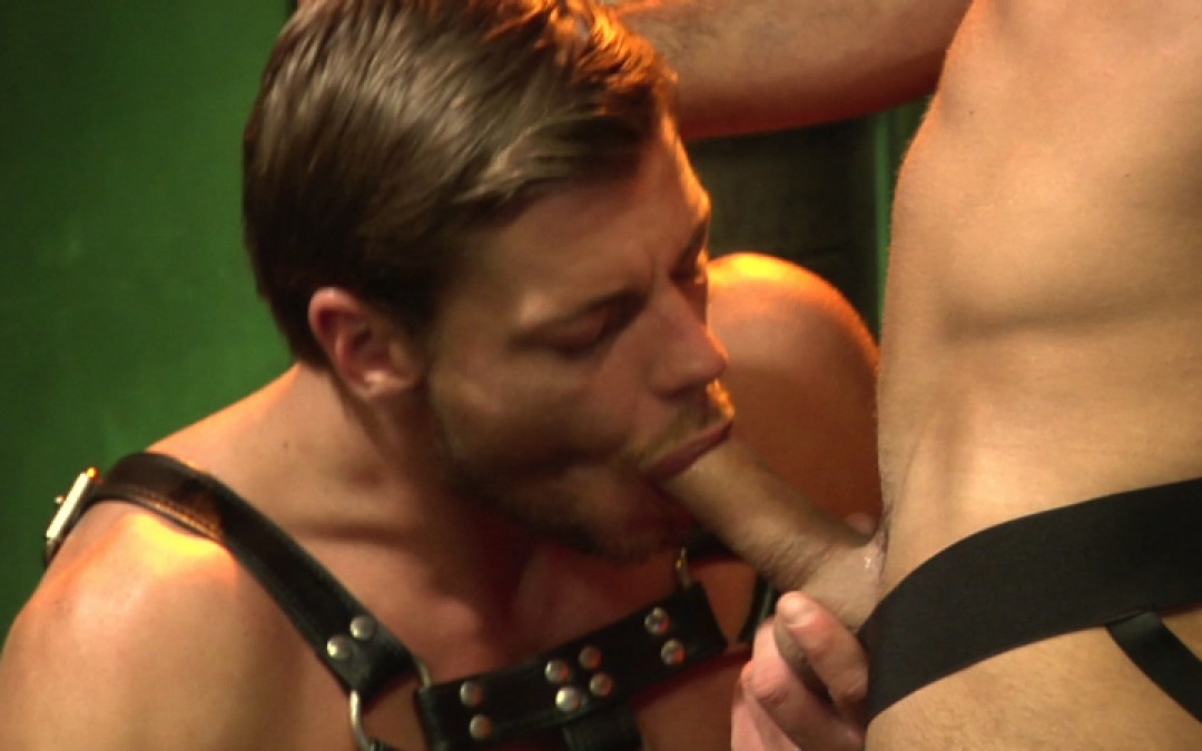 Good meat for the hot bartender