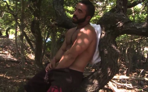 L16302 MISTERMALE gay sex porn hardcore fuck videos males beefy hairy studs hunks 02