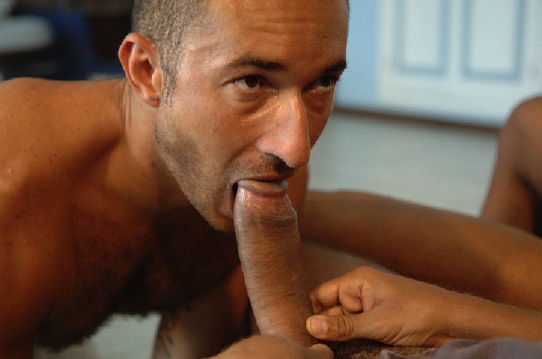 Stretched mouth on horse-cocks