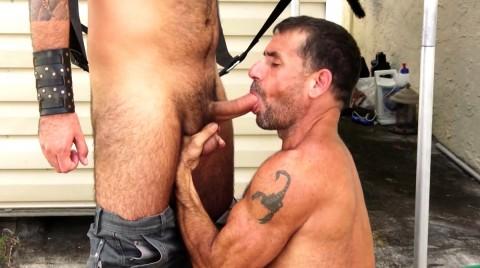 L16057 MISTERMALE gay sex porn hardcore fuck videos butch male muscle xxl cocks cum spunk 005