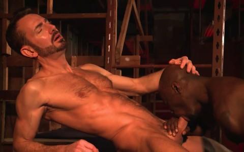 L16319 MISTERMALE gay sex porn hardcore fuck videos butch hunks muscle studs 21