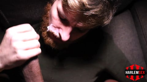 L18784 HARLEMSEX gay sex porn hardcore fuck videos bj blowjob handjob wank deepthroat mouthfuck cumload xxl bro cock spunk bbk bareback 13
