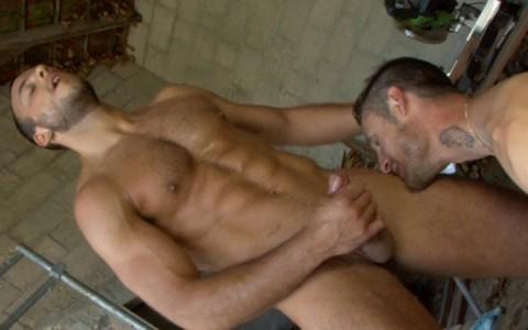 l9154-mistermale-gay-sex-porn-hardcore-videos-hairy-hunks-muscle-studs-tatoos-beefcake-scruff-males-male-male-uknm-al-fresco-fuckers-026