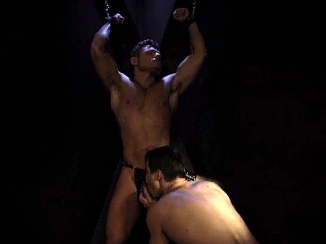 Young muscled sex-slave