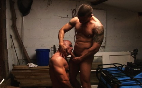 l7299-cazzo-gay-sex-porn-hardcore-alphamales-out-on-the-farm-007