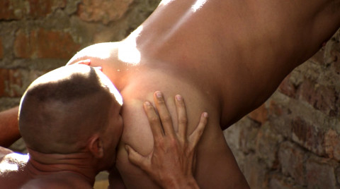 L19539 ALPHAMALES gay sex porn hardcore fuck videos male butch hunks muscle 03
