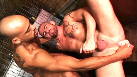 L5469 DARKCRUISING bulldog gay sex 03