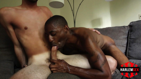 L18815 HARLEMSEX gay sex porn hardcore fuck videos bj blowjob deepthroat mouthfuck suck slut xxl cocks cum shot spunk 11
