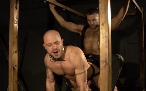l15817-mistermale-gay-sex-porn-hardcore-fuck-videos-hunks-studs-butch-hung-scruff-macho-06
