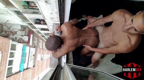 L19132 HARLEMSEX gay sex porn hardcore fuck videos black blowjob deepthroat mouthfuck bj facecum hung young macho lads xxl cocks 08