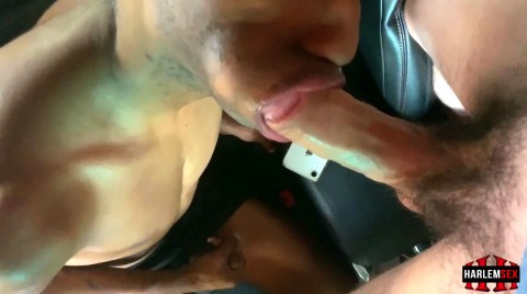L18738 HARLEMSEX gay sex porn hardcore videos black thug xxl cocks us cum deepthroat 18672