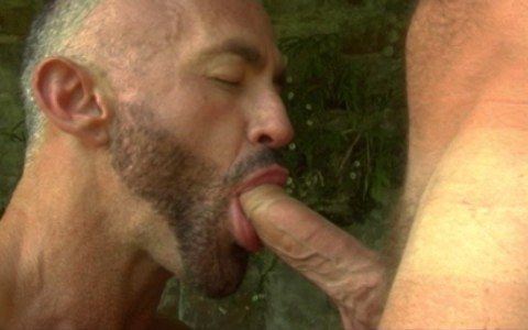 l7289-gay-sex-porn-hardcore-alphamales-out-in-the-open-006