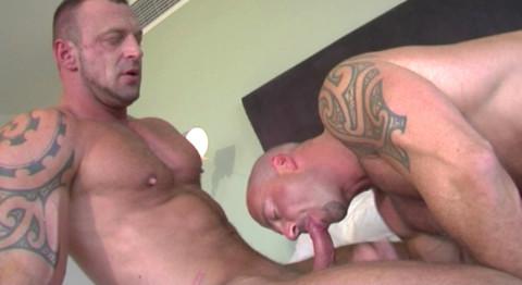 L19454 ALPHAMALES gay sex porn hardcore fuck videos butch hairy scruff males mucles xxl cocks cum loads 007