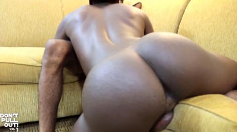 L15088 MISTERMALE gay sex porn hardcore fuck videos butch men hairy hunks muscle studs 02