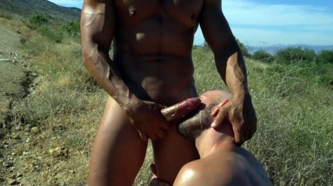 L20397 MISTERMALE gay sex porn hardcore fuck videos butch hairy hunks macho men muscle rough horny studs cum sweat 24