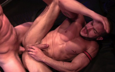 l14188-mistermale-gay-sex-porn-hardcore-videos-fuck-scruff-hunk-butch-hairy-alpha-male-muscle-stud-beefcake-007