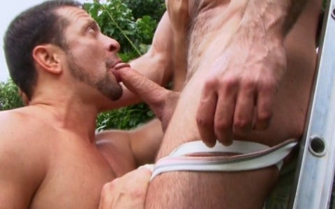 l9165-mistermale-gay-sex-porn-hardcore-videos-hairy-hunks-muscle-studs-tatoos-beefcake-scruff-males-male-male-butch-dixon-bear-with-me-004