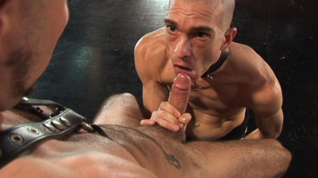 Hot, young and willing sub