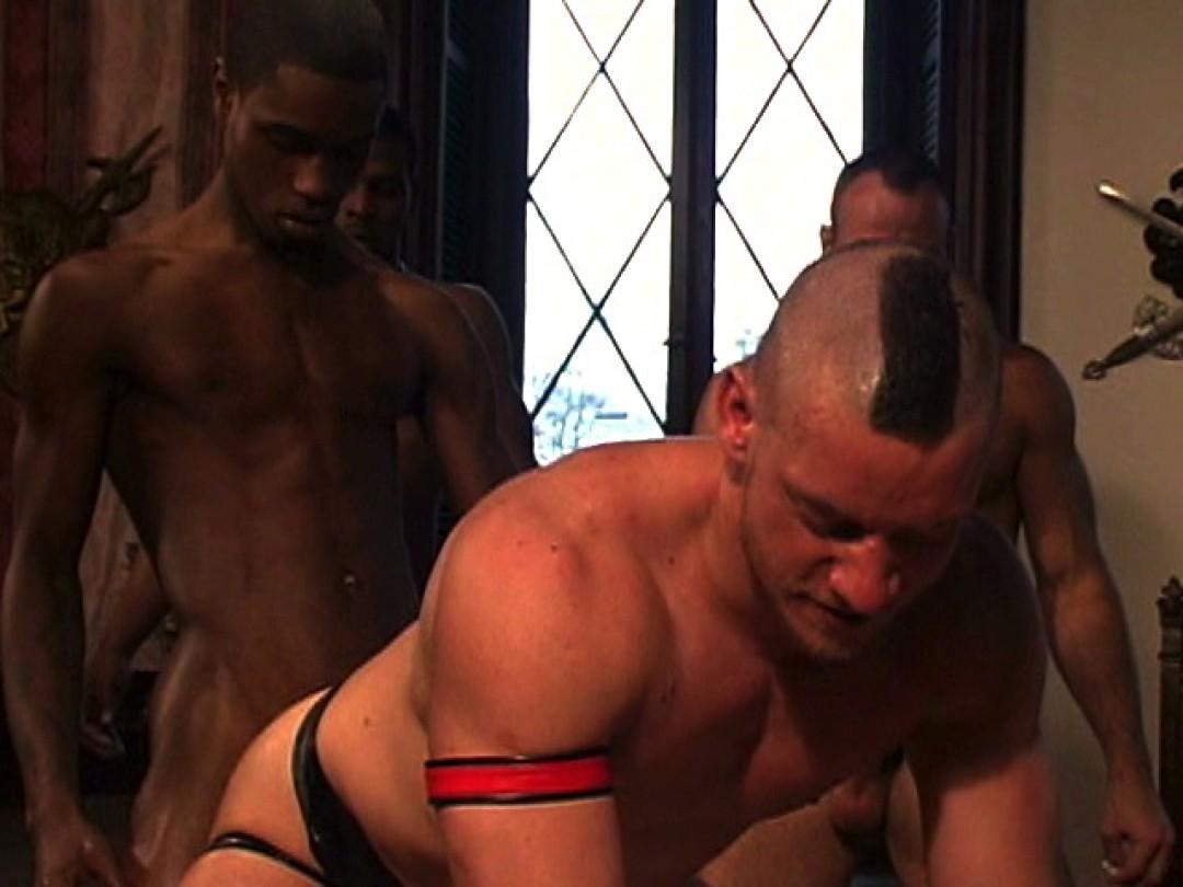 pitbull the show universblack partouze gay pic16