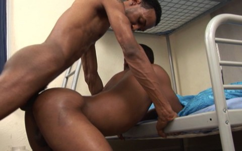 l6469-universblack-gay-sex-porn-hardcore-videos-blacks-gangsta-thugs-made-in-usa-flava-men-snow-ballerz-avalanche-016