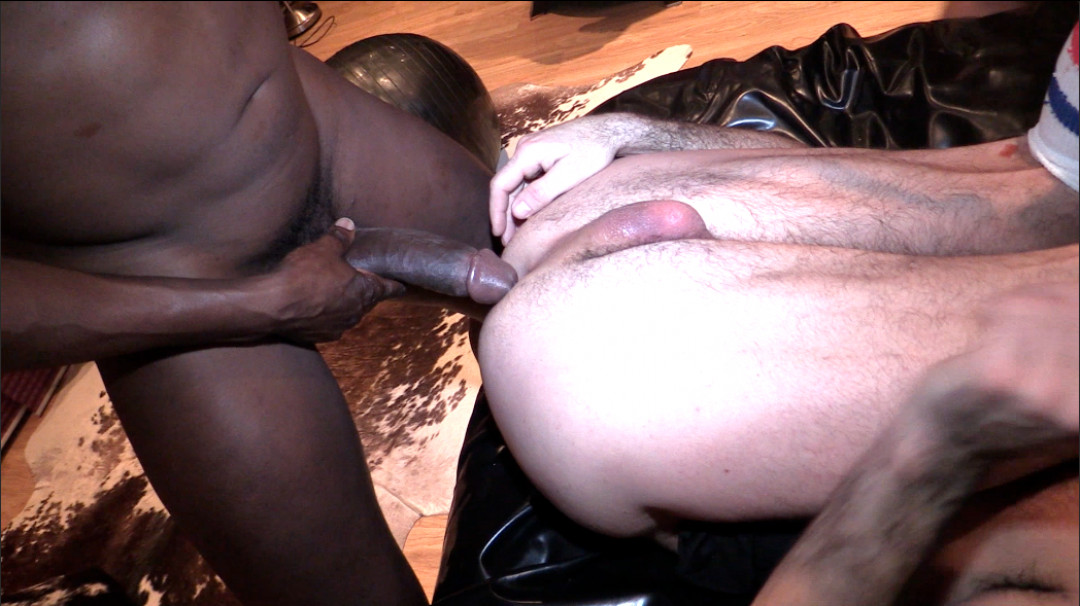 BIG BLACK DICK COMPILATION 1