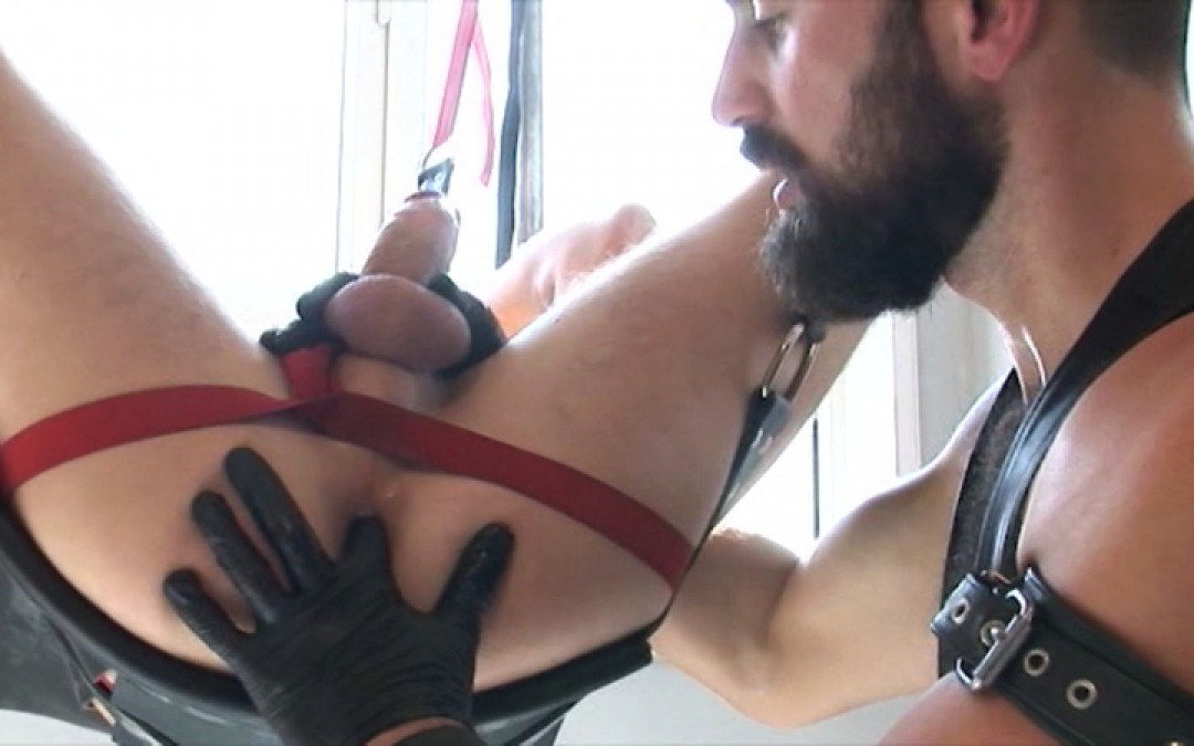 Obedience and dedication boy!