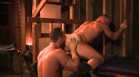 L16321 MISTERMALE gay sex porn hardcore fuck videos macho hairy hunks muscle 09