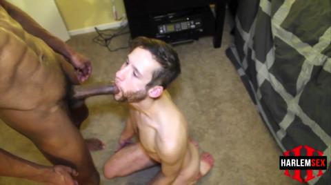 L18816 HARLEMSEX gay sex porn hardcore fuck videos bj blowjob deepthroat mouthfuck suck slut xxl cocks cum shot spunk 16