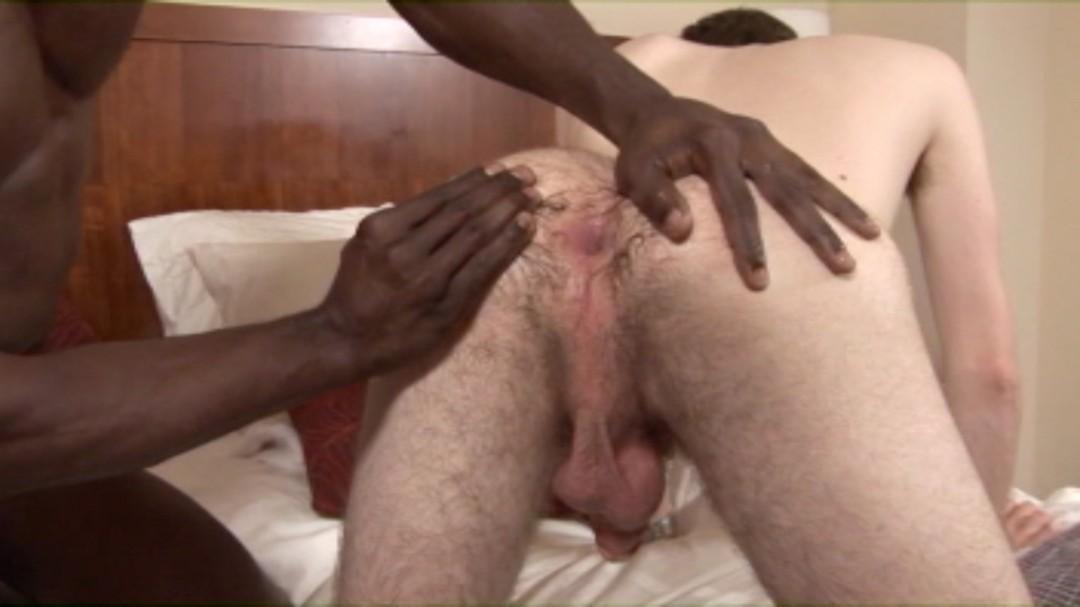 Hyperactive top black stud for white bottom