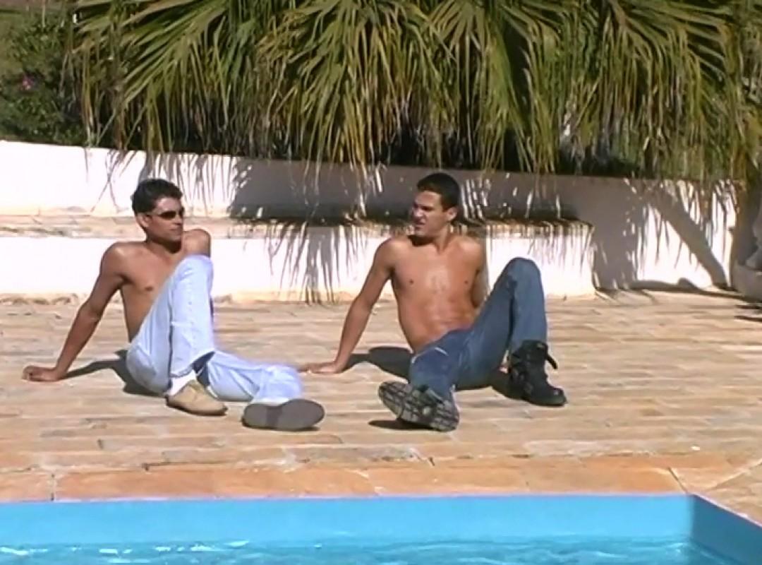 Brazilian cocks