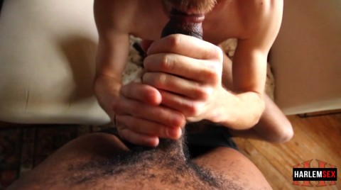 L18859 HARLEMSEX gay sex porn hardcore videos black thug xxl cocks us cum deepthroat 005