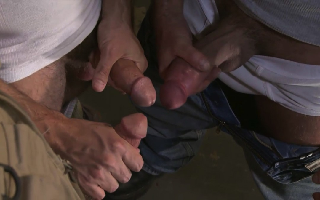 L16113 MISTERMALE gay sex porn hardcore fuck videos males beefy hairy studs hunks 11