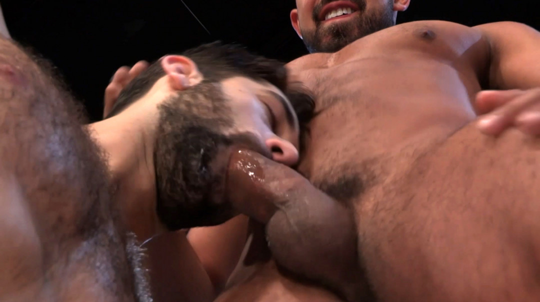 L19756 MISTERMALE gay sex porn hardcore fuck videos male butch hairy muscled studs hunks macho men xxl cocks cum 14