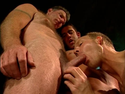 trio-ouvrier-muscle-6