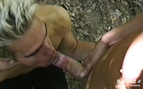 l15663-frenchporn-gay-sex-porn-hardcore-fuck-videos-french-france-twinks-minets-09