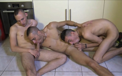 l11687-berryboys-gay-sex-porn-hardcore-videos-france-french-twinks-007