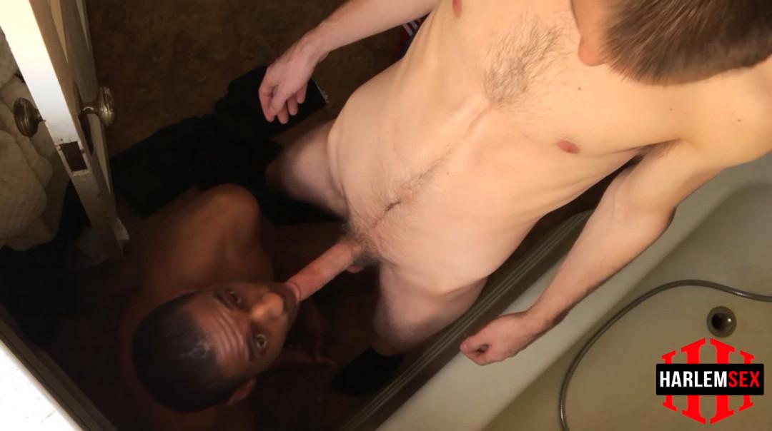 L18746 HARLEMSEX gay sex porn hardcore fuck videos blowjob deepthroat mouthfuck black cum slut sperm bbk bareback 06