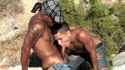 L18276 UNIVERSBLACK gay sex porn hardcore fuck videos black thugs papi gansta big black cock xxl dick cum bbk 02