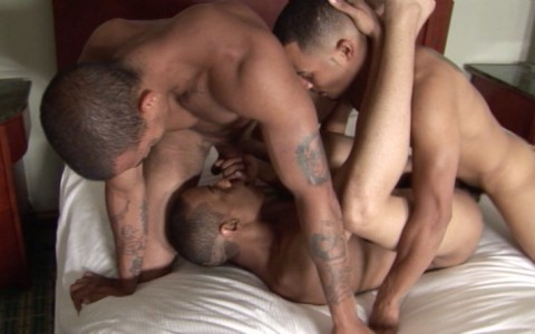 l6431-universblack-gay-sex-blacks-flava-papicock-miami-uncut-012