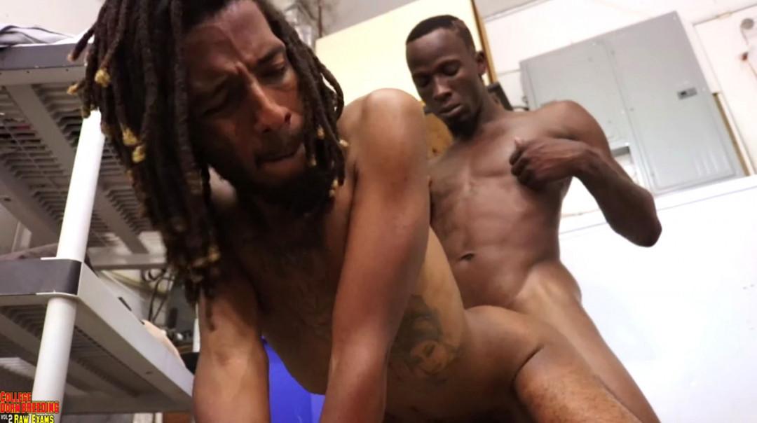 Gay thugs know how to fuck rasta men