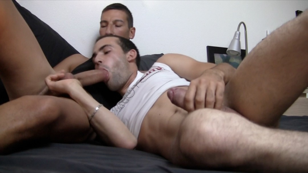 Two hung cock-suckers