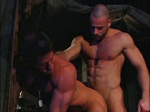 muscles sexe et cranes rases09