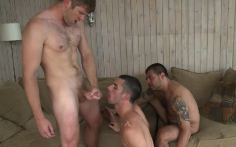 L16306 MISTERMALE gay sex porn hardcore fuck videos males beefy hairy studs hunks 12