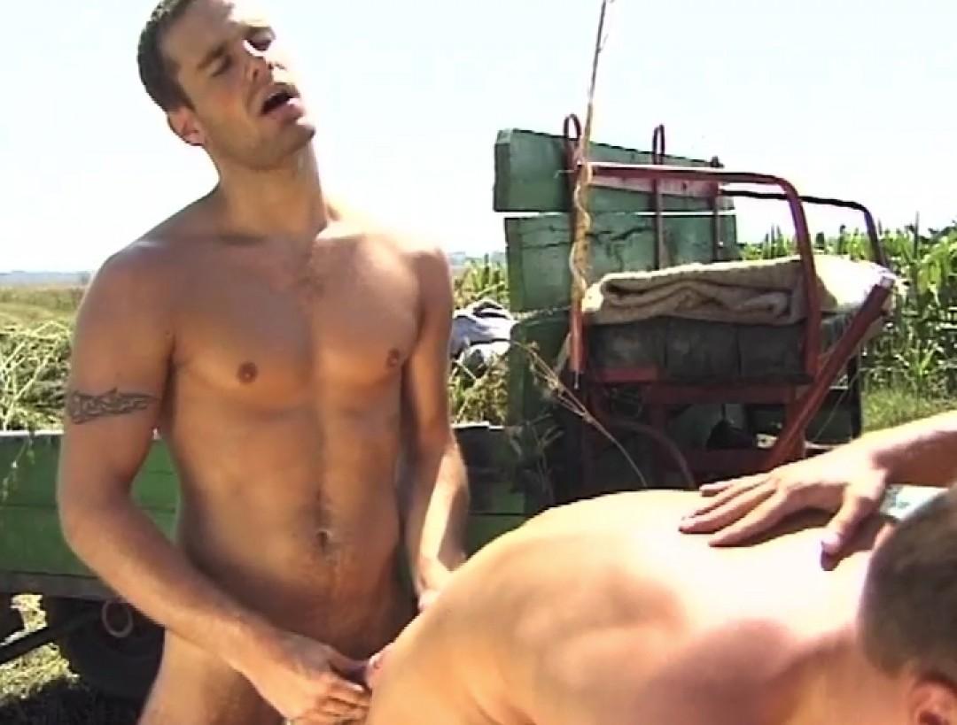 The farmer's slut