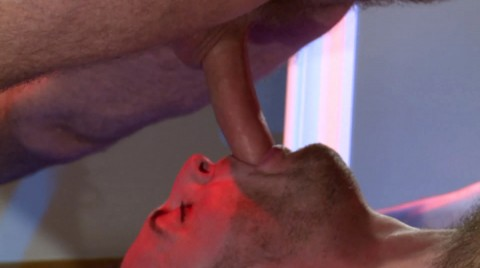 L16041 MISTERMALE gay sex porn hardcore fuck videos butch muscle studs rough xxl cocks cum hairy 050