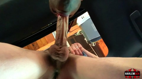 L18738 HARLEMSEX gay sex porn hardcore videos black thug xxl cocks us cum deepthroat 18673
