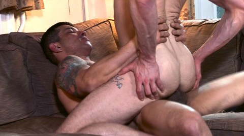 L17688 ALPHAMALES gay sex porn hardcore fuck videos horny brits xxl cocks cum hairy studs 10