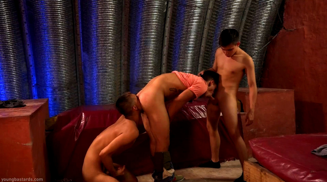 XL Cocks Share Young Hole