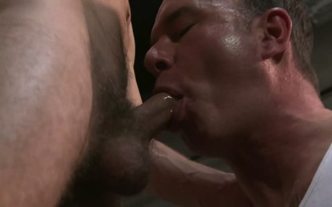 L16114 MISTERMALE gay sex porn hardcore fuck videos males beefy hairy studs hunks 07